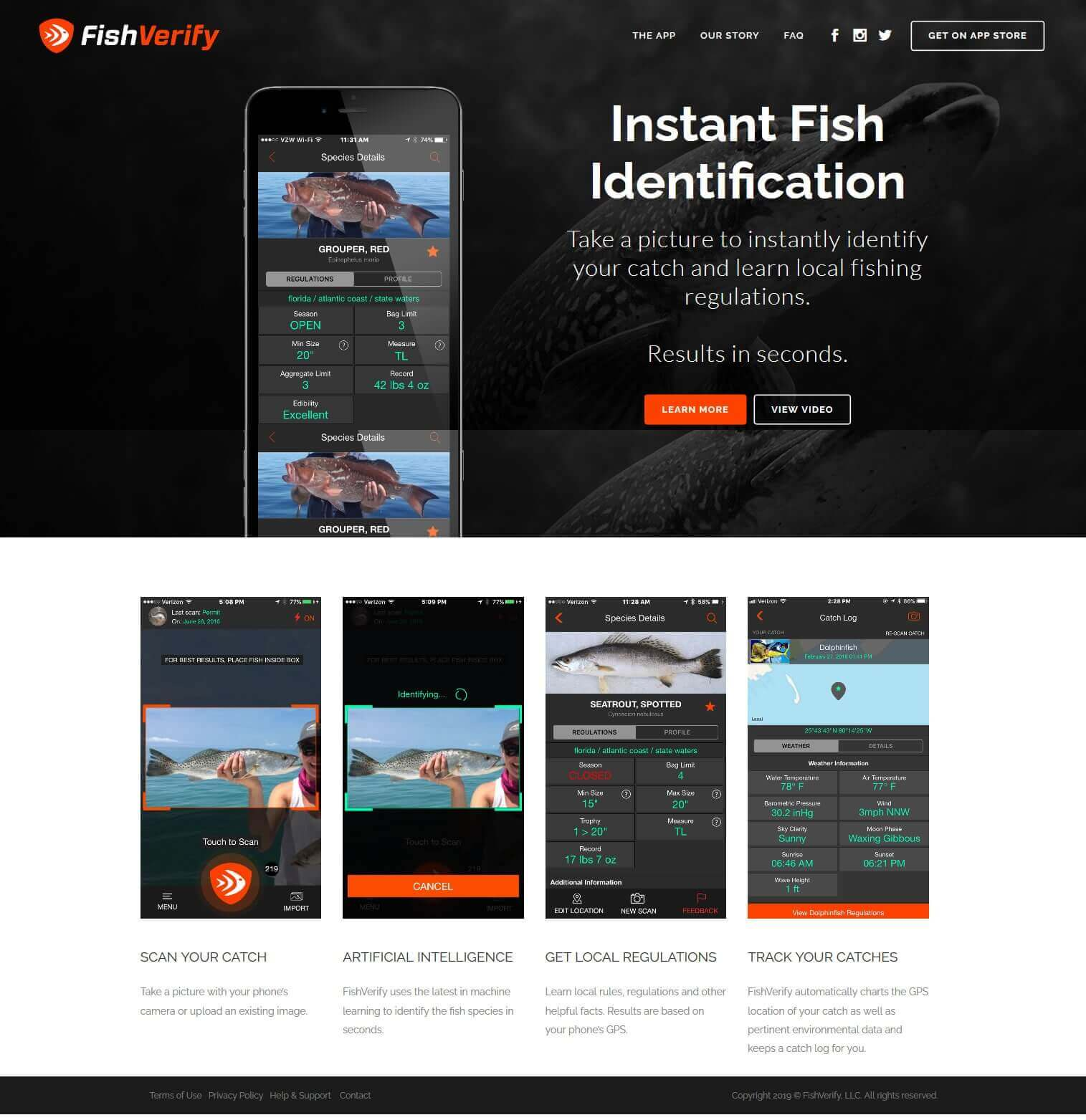 FishVerify – Instant Fish Identification